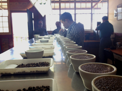 Cupping Coffees