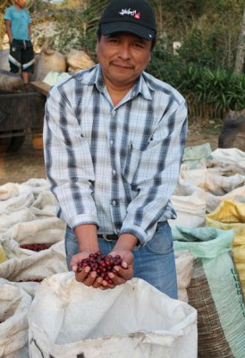 Farmer with his coffee cherries.