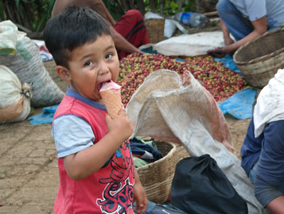 Boy with ice cream at the harvest.