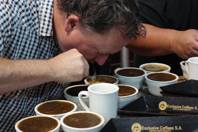 Cupping at Exclusive Coffees.